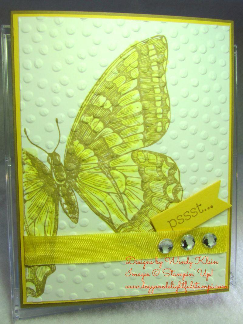 Swallowtail Rewind (5)