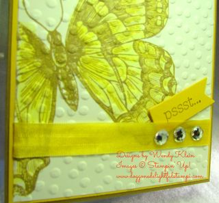 Swallowtail Rewind (6)