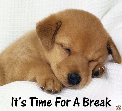 Its-time-for-a-break