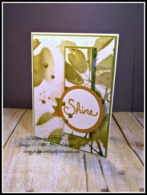 Shine (1)