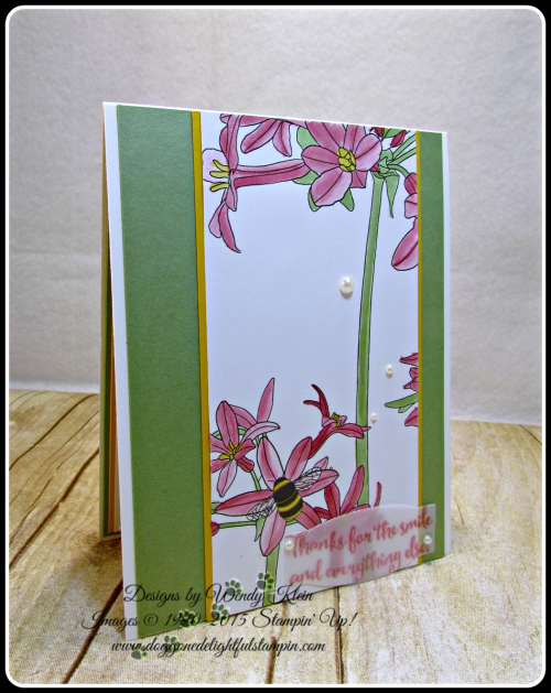 Inside the Lines, Dragonfly Dreams, PL Cards & Labels, Clear Wink of Stella, Pearls, Wendy Klein, Stampin Up (1)