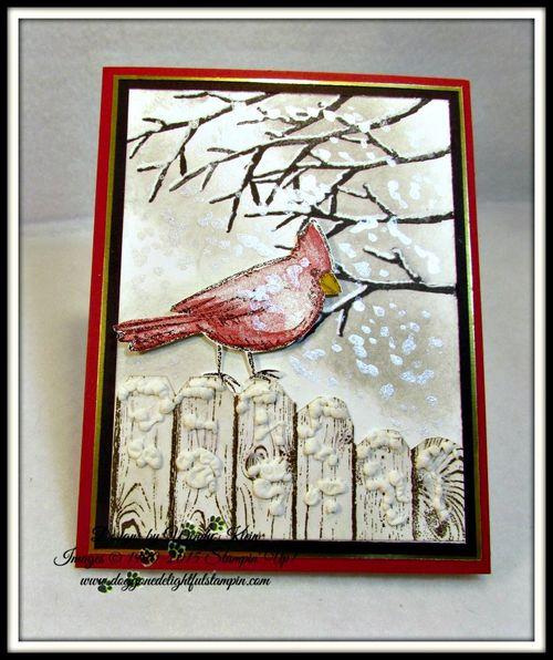 Snow Cardinal (1)