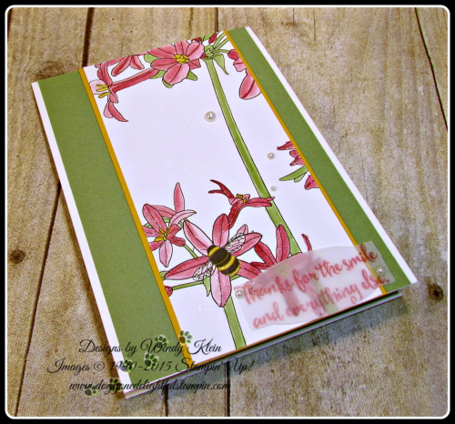 Inside the Lines, Dragonfly Dreams, PL Cards & Labels, Clear Wink of Stella, Pearls, Wendy Klein, Stampin Up (3)