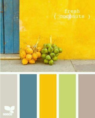 PP255 Color Pallete