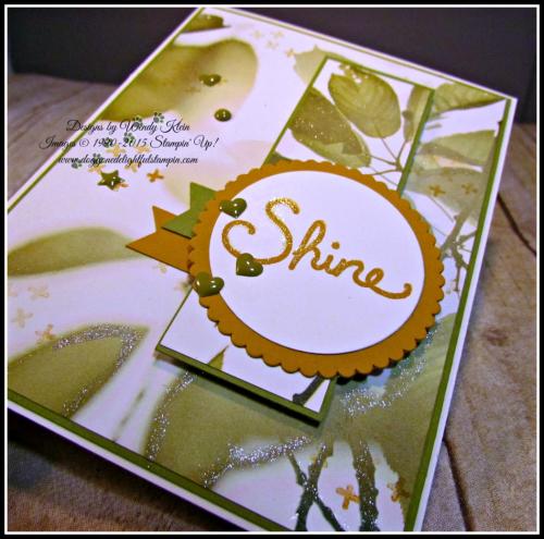 Shine (4)
