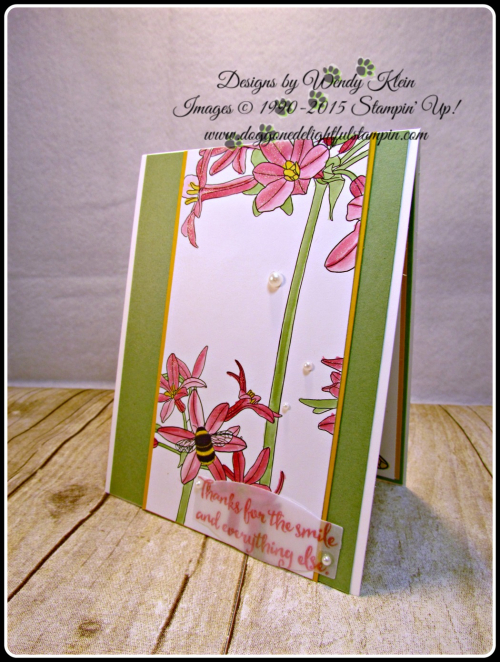 Inside the Lines, Dragonfly Dreams, PL Cards & Labels, Clear Wink of Stella, Pearls, Wendy Klein, Stampin Up (2)