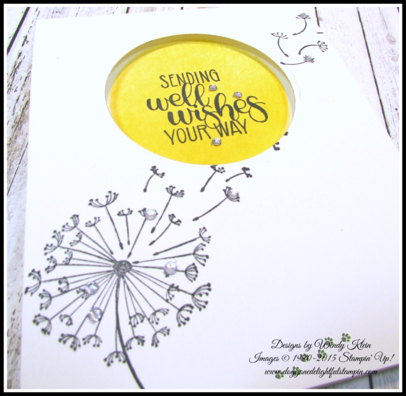 Dandelion Get Well Wishes - 4