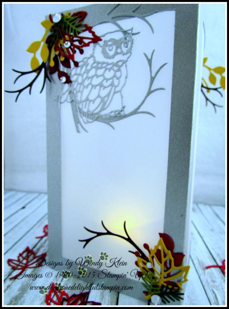 Night Owl Luminary - 6