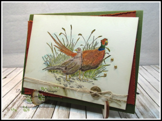 Pleasant Pheasant w_dry watercolor pencil technique - 1