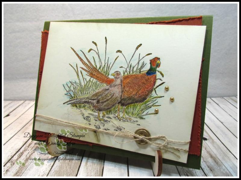 Pleasant Pheasant w_dry watercolor pencil technique - 1