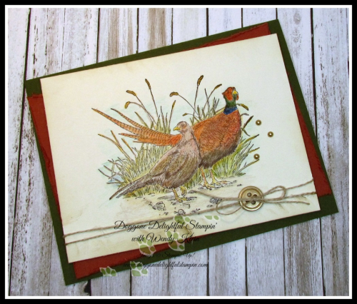 Pleasant Pheasant w_dry watercolor pencil technique - 4