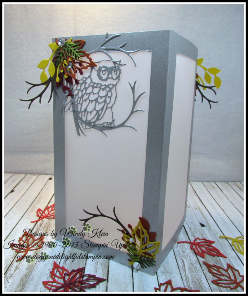 Night Owl Luminary - 1