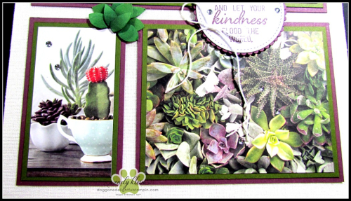 Grown With Kindness Shadow Box Alternative - 5