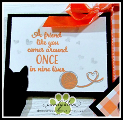 Nine_Lives_Happy_Tails - 5