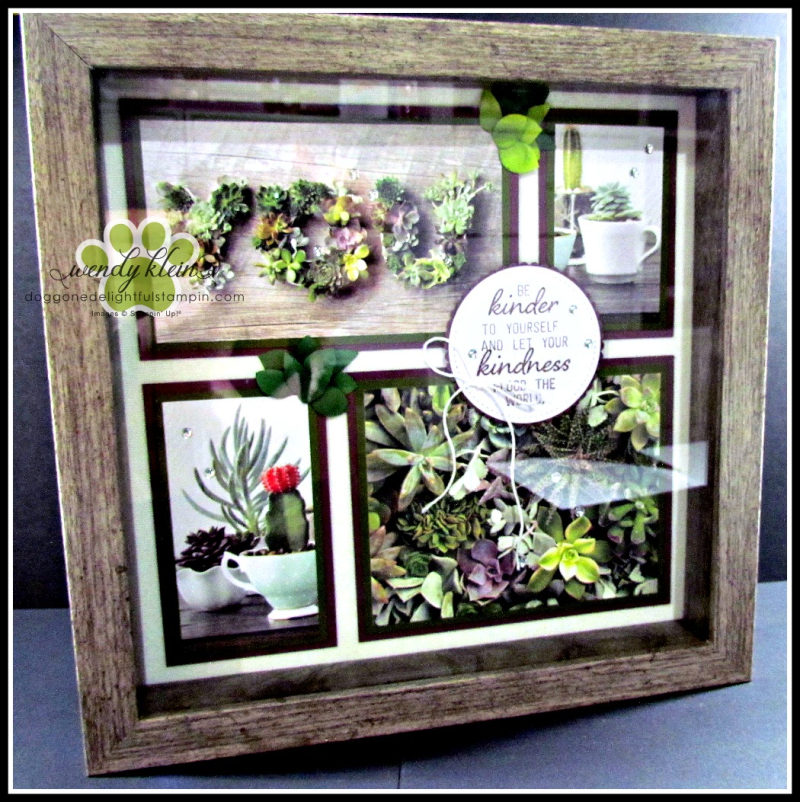 Grown With Kindness Shadow Box Alternative - 6