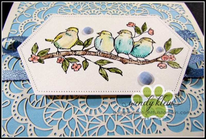 Free-as-a-bird-showcase - 2