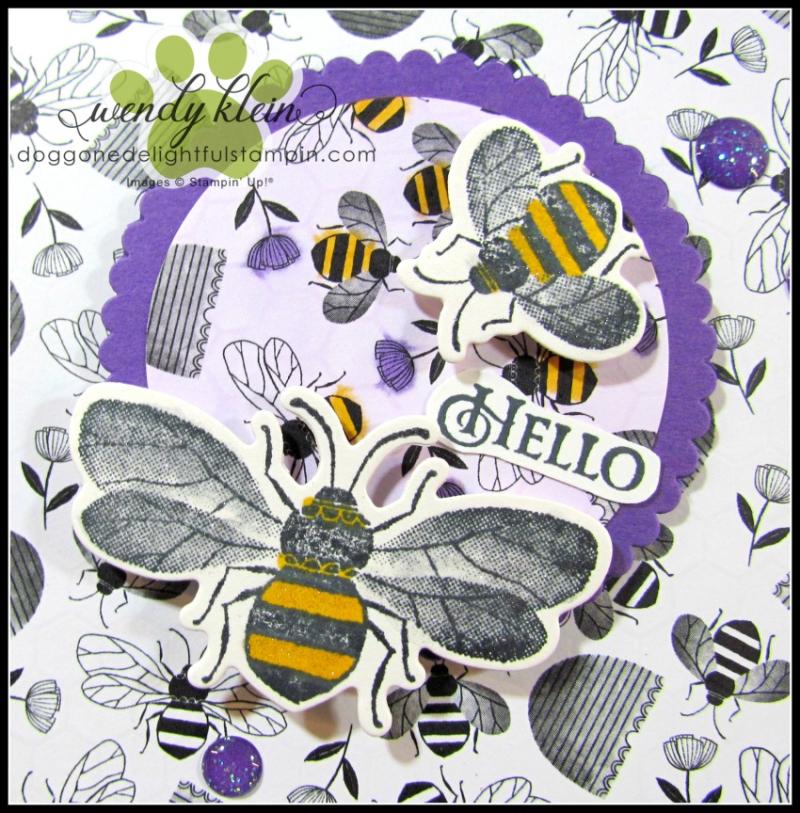 Honey_Bee_Golden_Honey_SDSP-6