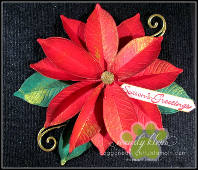 Nature's_Roots_Poinsettia-2
