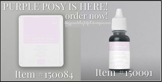Purple_posy_avail