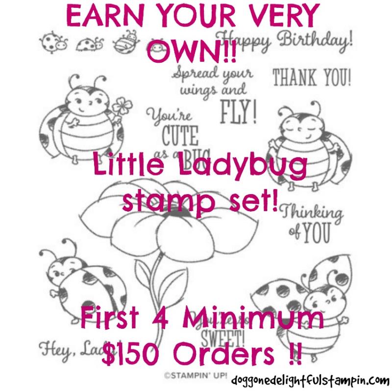 Little_Ladybug_Giveaway