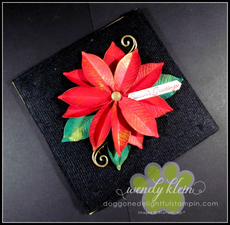 Nature's_Roots_Poinsettia-1