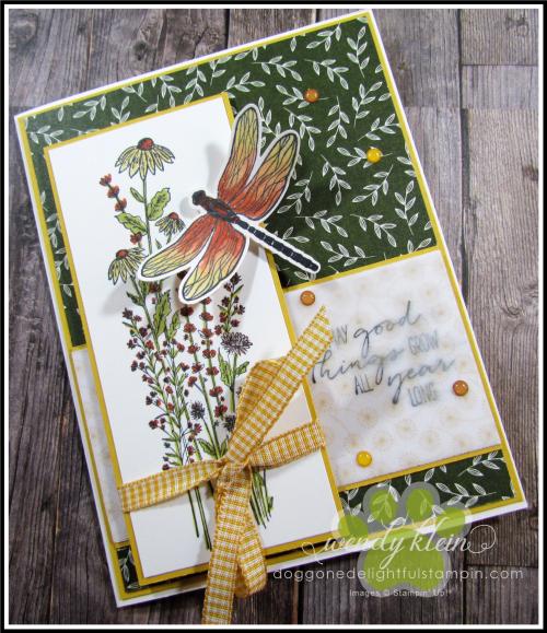 Dragonfly_Garden_FocalPanel - 1
