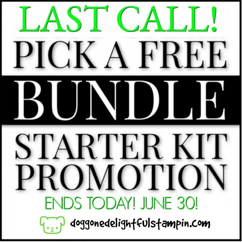 LAST-CALL-Ends-TONIGHT-Starter Bundle