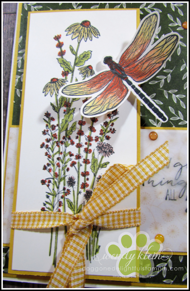 Dragonfly_Garden_FocalPanel - 5